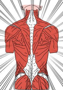 rugpijn oefeningen